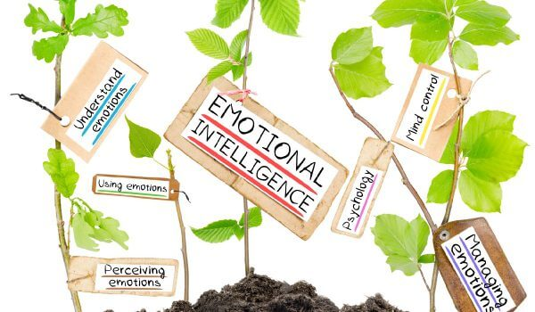 how to develop emotional intelligence pdf